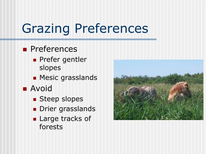 Grazing Preferences