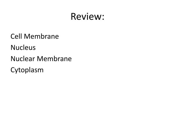 Review: