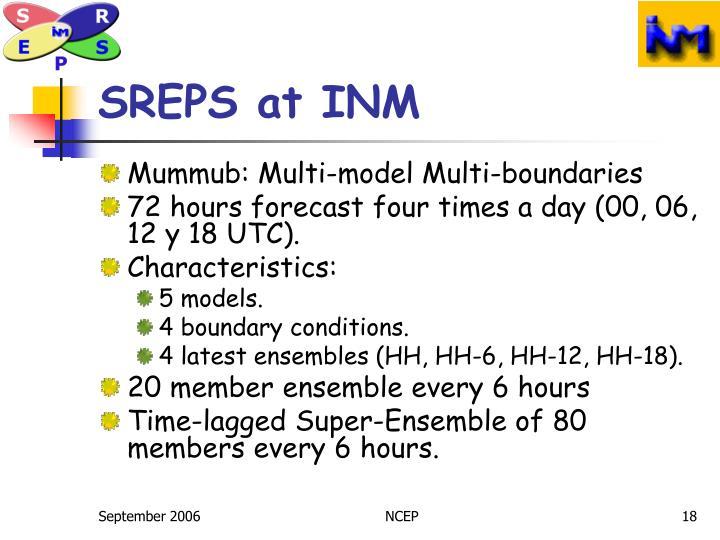 SREPS at INM