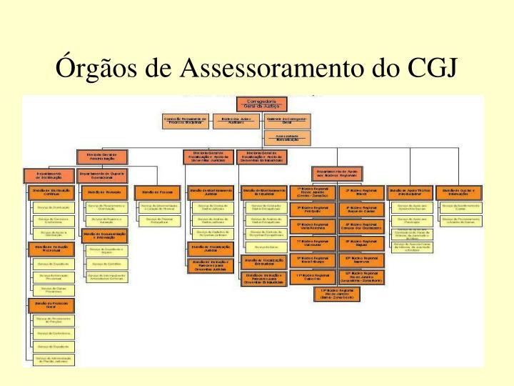 Órgãos de Assessoramento do CGJ