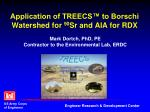 application of treecs to borschi watershed for 90 sr and aia for rdx