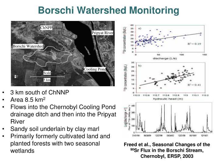 Borschi