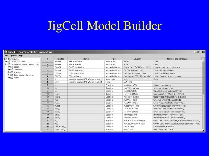JigCell Model Builder