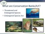 what are conservation banks ilf
