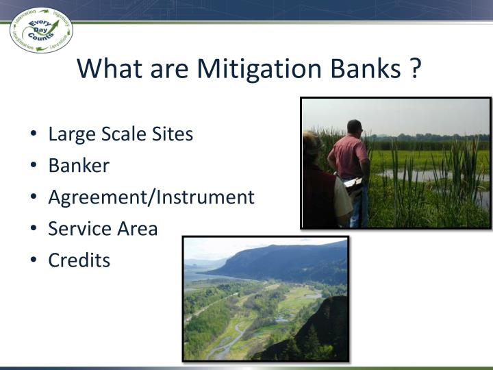 What are Mitigation Banks ?
