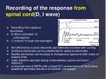 recording of the response from spinal cord d i wave