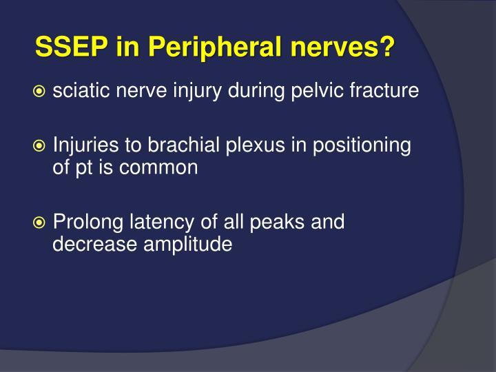 SSEP in Peripheral nerves?