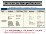 aorta and its principal branches