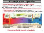 exchange in the capillaries