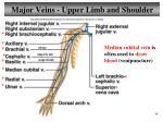 major veins upper limb and shoulder