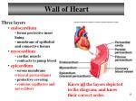 wall of heart