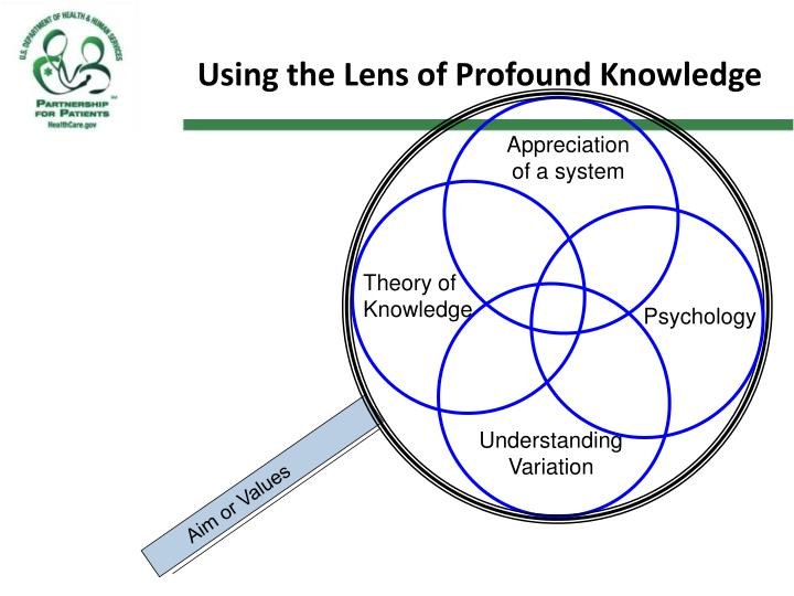 Using the Lens of Profound Knowledge
