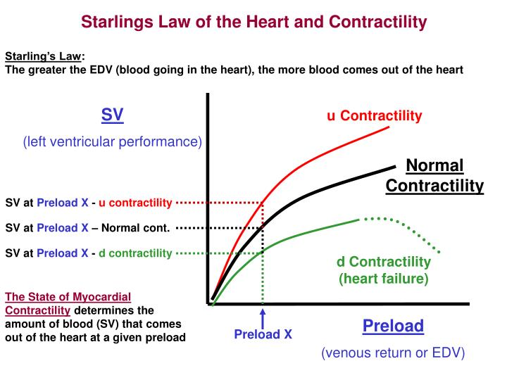 Starlings Law of the Heart and Contractility