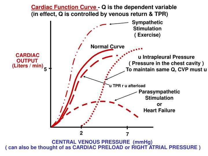 Cardiac Function Curve