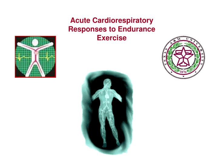 Acute Cardiorespiratory Responses to Endurance Exercise
