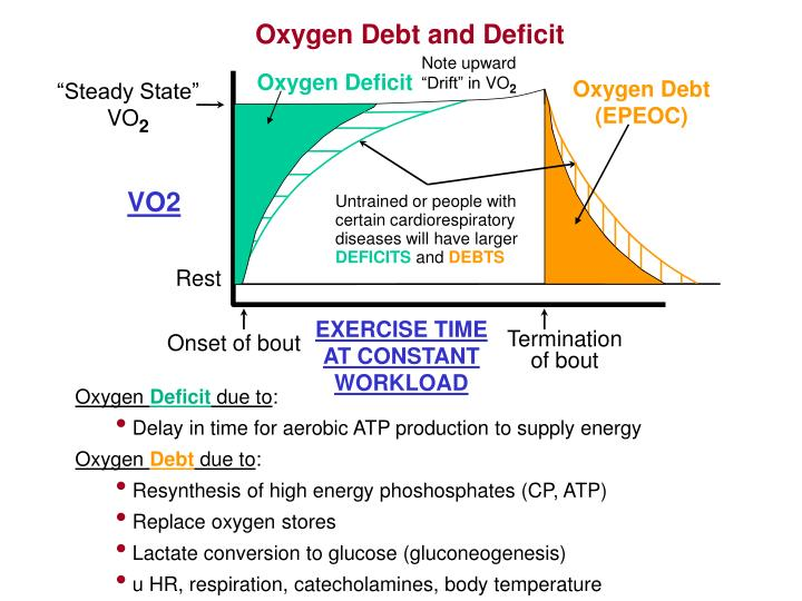 Oxygen Debt and Deficit