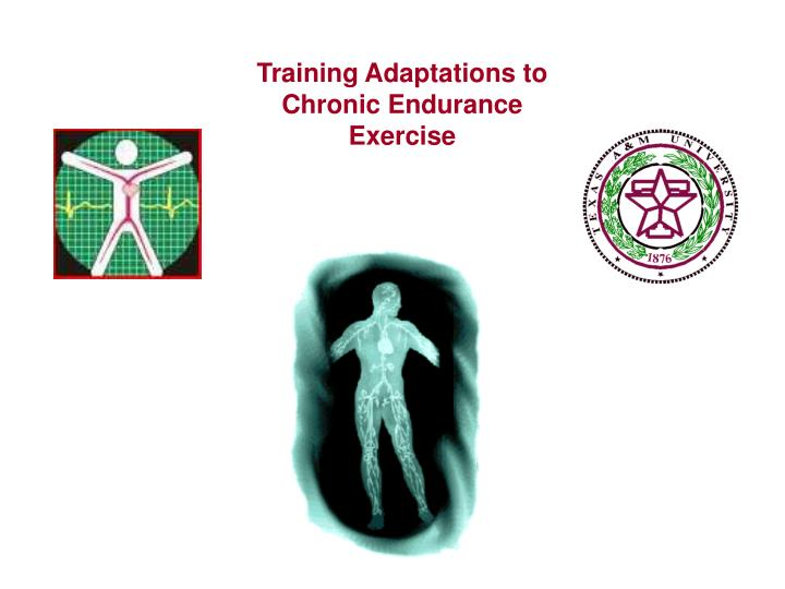 Training Adaptations to Chronic Endurance Exercise