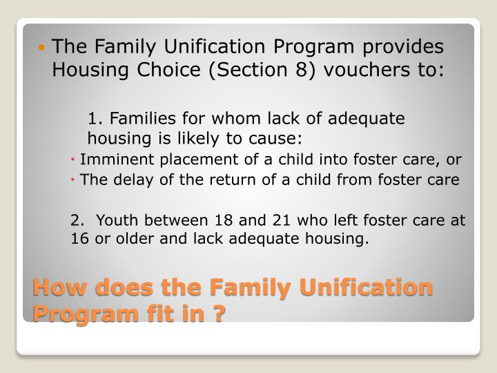 The Family Unification Program provides Housing Choice (Section 8) vouchers to:
