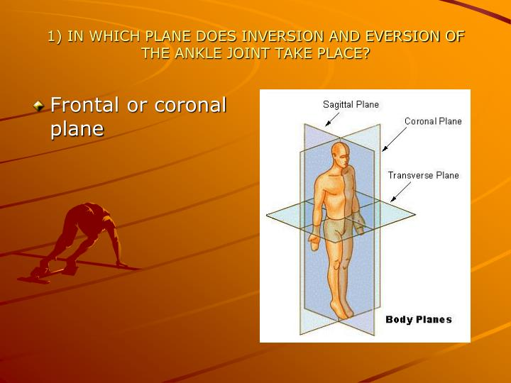 1 in which plane does inversion and eversion of the ankle joint take place