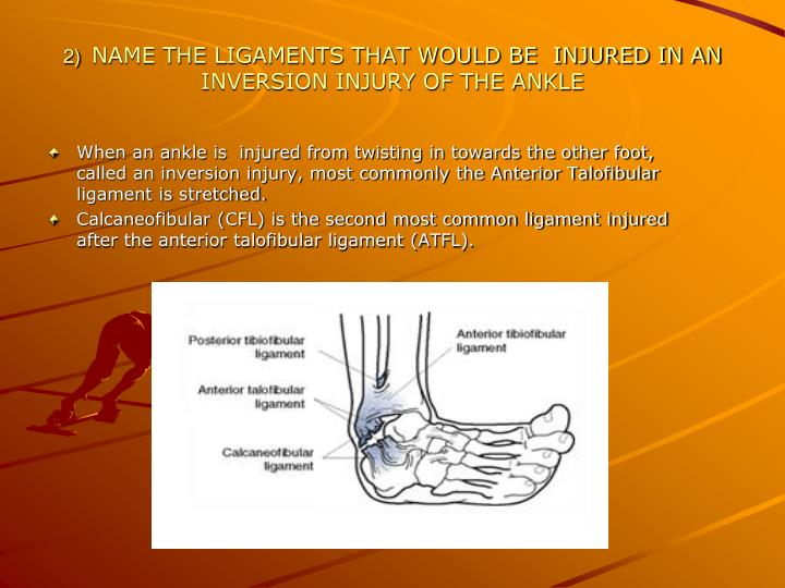 2 name the ligaments that would be injured in an inversion injury of the ankle