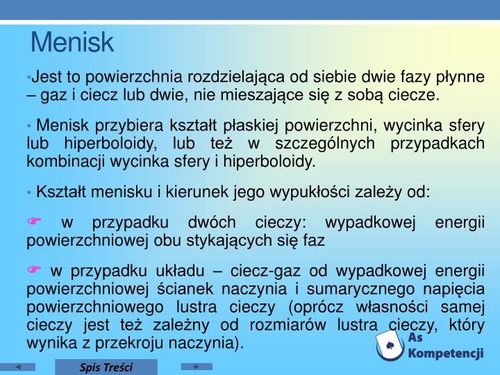 Menisk