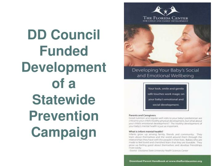 DD Council Funded Development of a Statewide Prevention Campaign