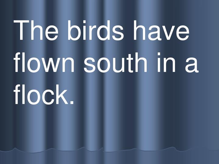The birds have flown south in a flock.