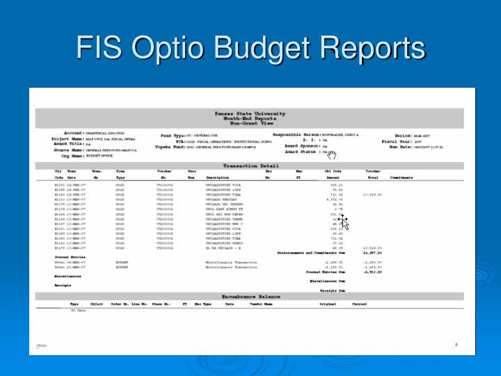 FIS Optio Budget Reports