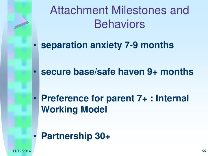 Attachment Milestones and Behaviors