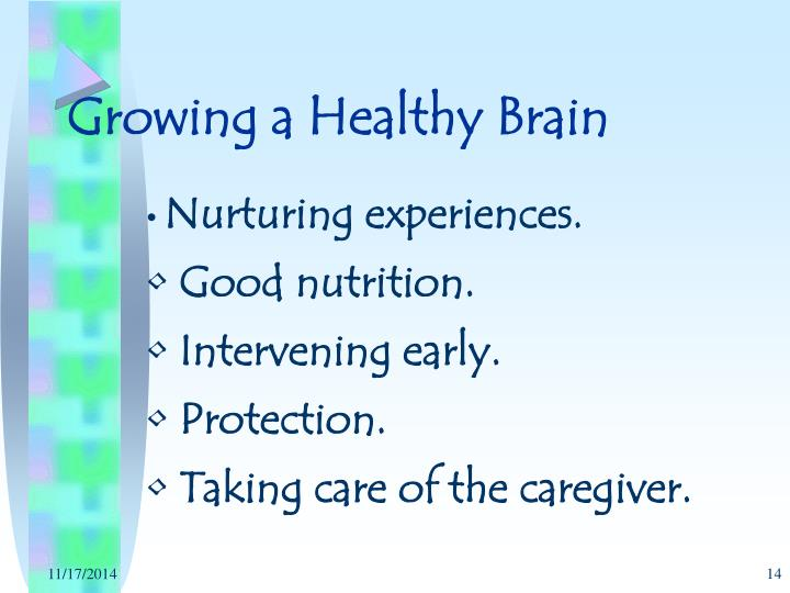 Growing a Healthy Brain