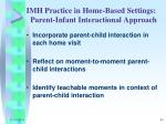 imh practice in home based settings parent infant interactional approach