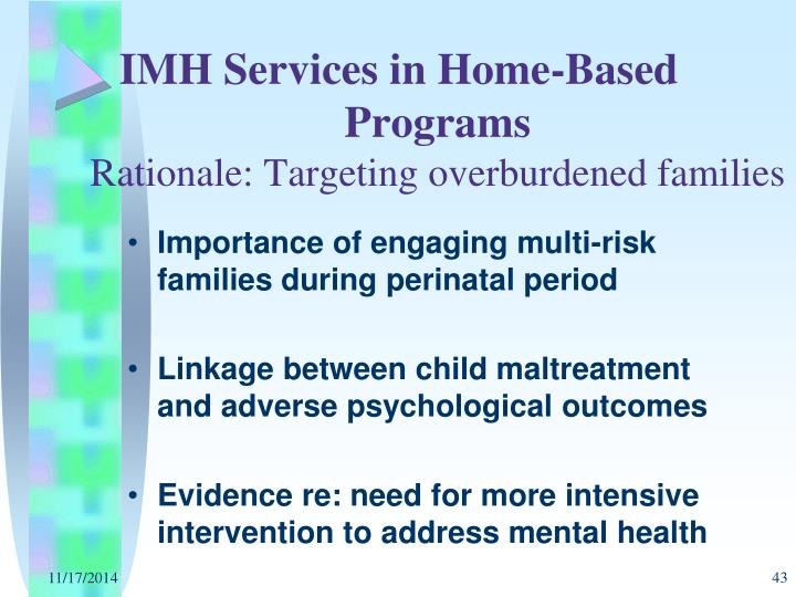 IMH Services in Home-Based 	                        Programs