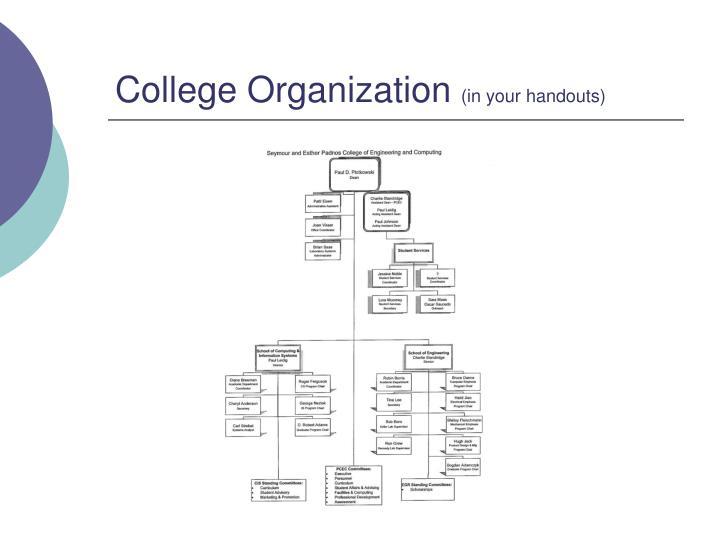 College Organization