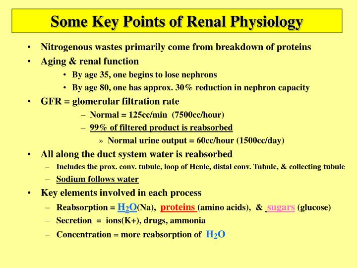 Some Key Points of Renal Physiology