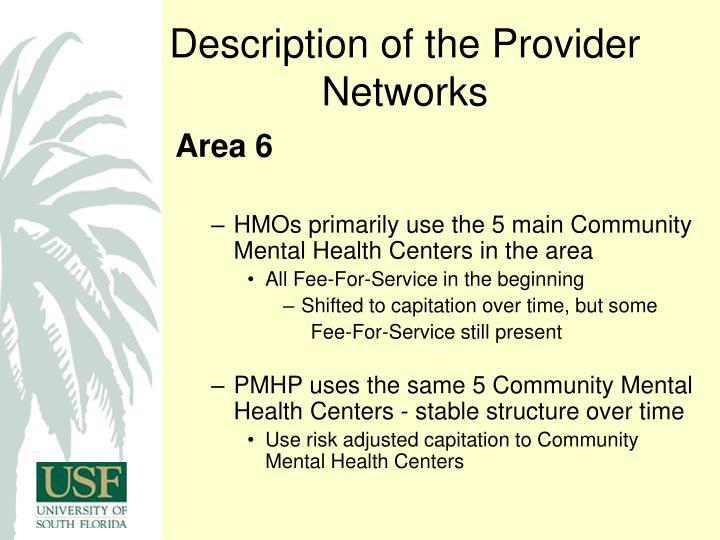Description of the Provider Networks