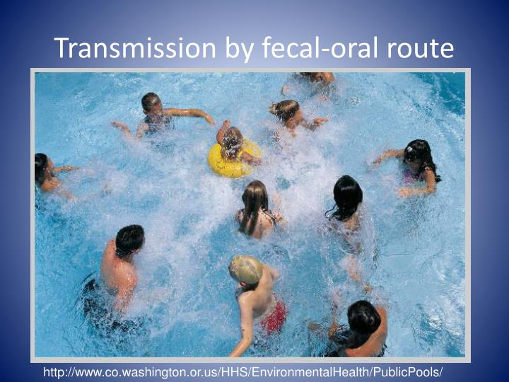 Transmission by fecal-oral route