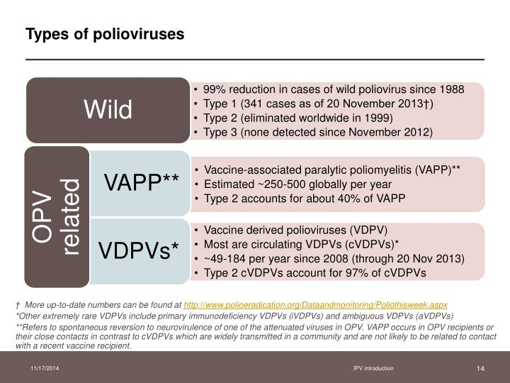 Types of polioviruses
