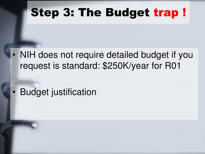 Step 3: The Budget