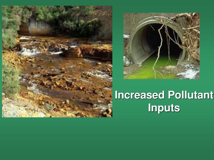 Increased Pollutant Inputs