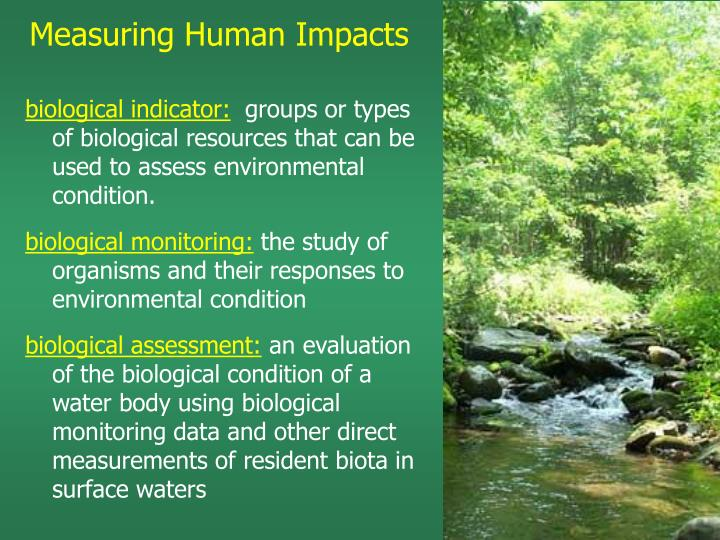 Measuring Human Impacts