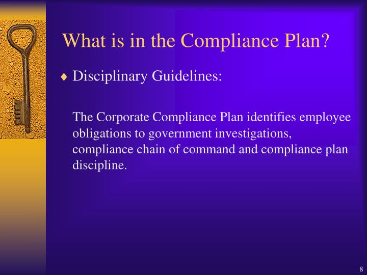 What is in the Compliance Plan?