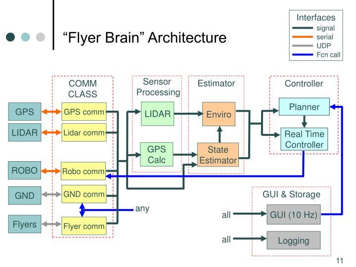 """""""Flyer Brain"""" Architecture"""