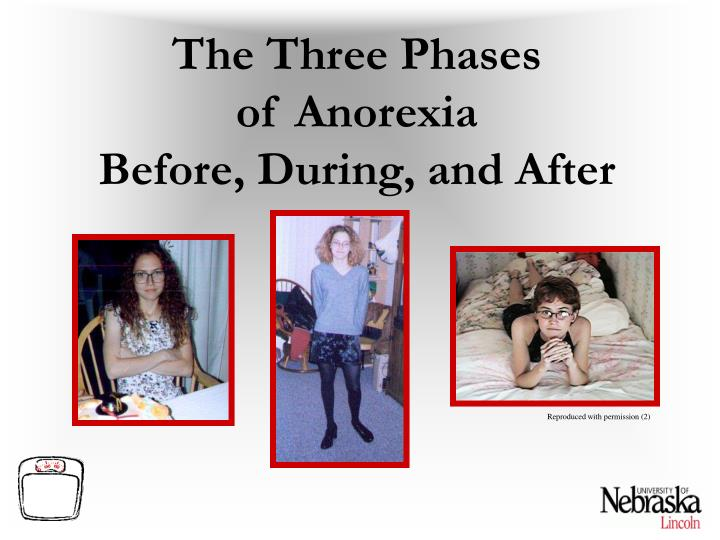 The Three Phases