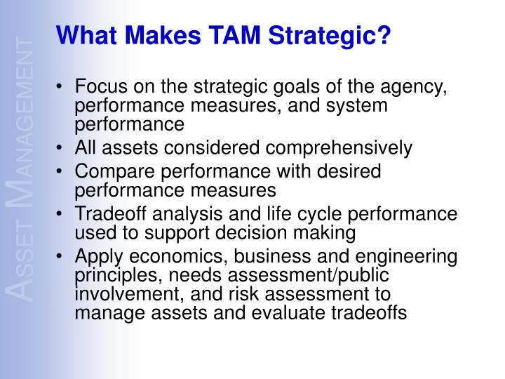 Focus on the strategic goals of the agency, performance measures, and system performance