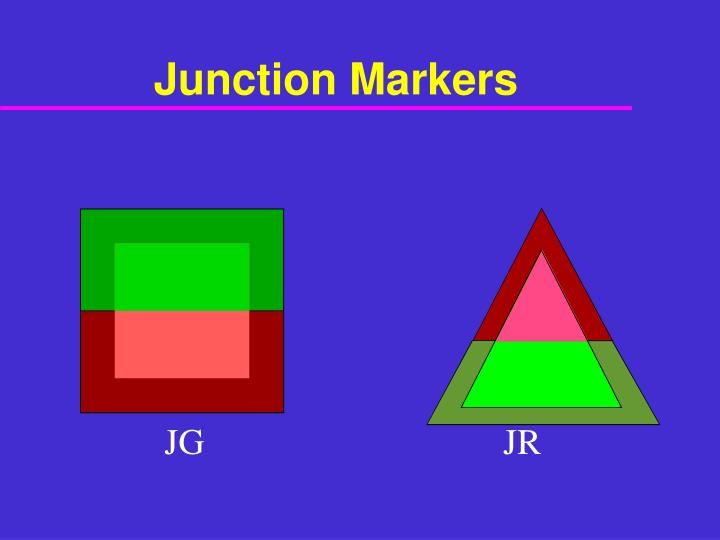 Junction Markers