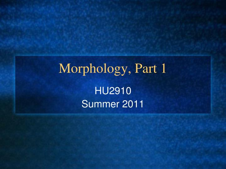 Morphology part 1