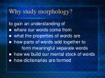why study morphology4