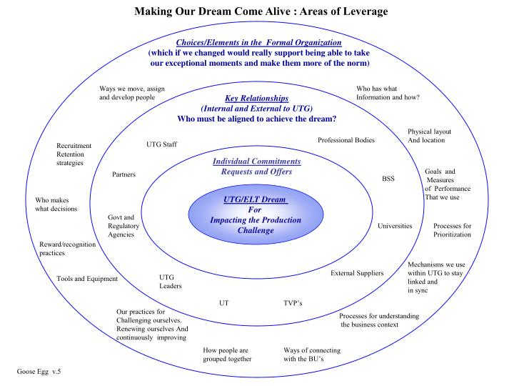 Making Our Dream Come Alive : Areas of Leverage