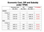 economic cost cip and subsidy under tpds
