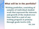what will be in the portfolio